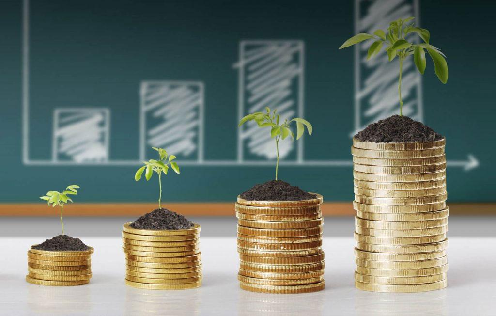 Benifits to NRI investors - goelganga